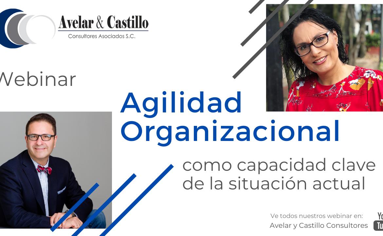 Webinar: Agilidad organizacional como capacidad clave de la situación actual